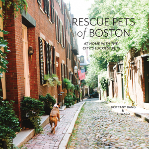 RESCUEPETSbook_cover